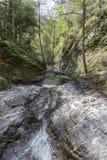 Eaton-Schlucht-Nebenfluss in San Gabriel Mountains Stockbilder