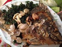 Eatting ryba Fotografia Stock