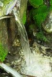 Eau courante dans la forêt de la Crimée Photographie stock libre de droits
