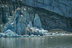 Eau de marée de Margerie galcier, baie de glacier, Alaska image libre de droits