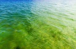 Eau de mer de la vague photos libres de droits