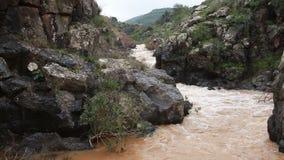 Eau de rivière passant par la montagne banque de vidéos