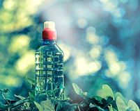 Eau de source mis en bouteille pure Photo stock