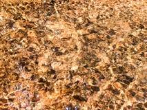 Eau de surface modelée par résumé d'or Photos stock