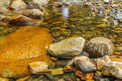 eau douce Photographie stock libre de droits