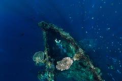 Eau du fond de bain d'homme de Freediver au naufrage, Bali images stock