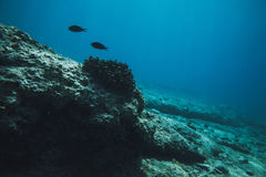 Eau du fond en mer Photo libre de droits