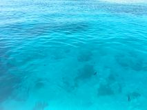 Eau et ondulations de mer photo libre de droits