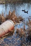 Eaux d'égout de pollution Photos libres de droits