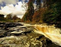 Eaux d'inondation Image libre de droits