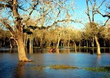 eaux d'inondation Images libres de droits