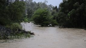 Eaux d'inondation après forte pluie à Brisbane, Queensland banque de vidéos