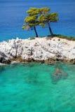 Eaux de mer de turquoise à l'île de Skopelos Photographie stock libre de droits