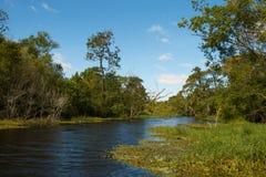 Eaux de plus près de la source de Pen Creek de natation image libre de droits