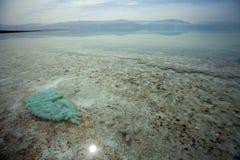 Eaux peu profondes de mer morte Photographie stock libre de droits