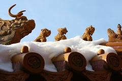 Eaves in città ed in neve severe Fotografia Stock