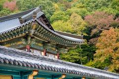 Eaves van de tempel tegen een Achtergrond van de Herfst Stock Fotografie