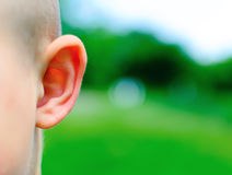 Eavesdropping. Ear of a young child on a blurred green background Royalty Free Stock Photo
