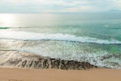 Eb bij oceaanstrand Royalty-vrije Stock Fotografie