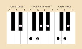 Eb major scale and fingering for piano. Scale and fingering of Eb E flat major scale on piano for education or every application Stock Photo
