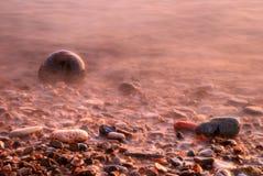 Eb op een rotsachtig strand Royalty-vrije Stock Afbeelding