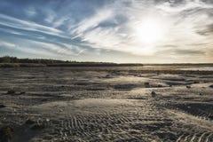 Ebb in baltic sea Stock Photography