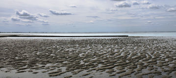 Ebb. Landscape beside north sea on an ebb Stock Images