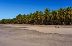 Ebb on Pacific ocean, Costa Rica Stock Image