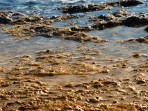 Ebb tide. Sight on shalllow sea during the ebb tide period Stock Images