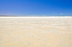 Ebbe bei Shell Beach - Denham stockbilder