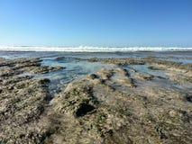 Ebbe deckt Felsen und Gezeitenpools am Seeufer auf Lizenzfreie Stockbilder