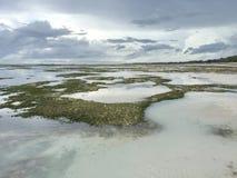 Ebbe im Indischen Ozean Stockfoto