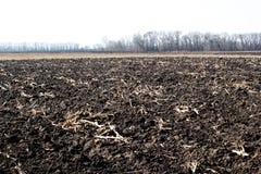 Eben gepflogenes Feld bereit zu den neuen Ernten Stockfoto