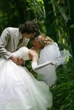 Eben verheiratete Paare   Stockfoto