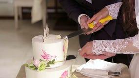 Eben verheiratetes Paar, das ihre Hochzeitstorte schneidet stock video
