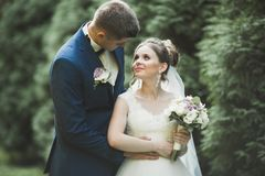 Eben verheiratetes Paar, das in Park während Händchenhalten läuft und springt stockfotos