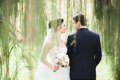 Eben verheiratetes Paar, das in Park während Händchenhalten läuft und springt lizenzfreies stockfoto