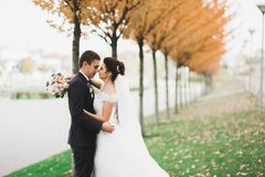 Eben verheiratetes Paar, das in Park während Händchenhalten läuft und springt lizenzfreie stockfotos