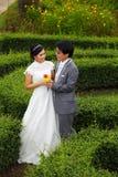 Eben verheiratetes Paar im Park Stockfotos