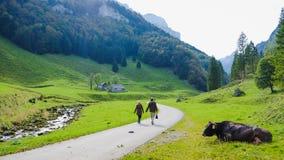 EBENALP, SWITZERLAND. / Ebenalp is a famous destination in  Appenzell , Switzerland Stock Photography
