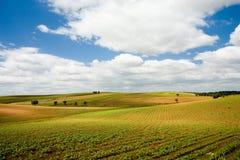 Ebenen von Alentejo, Portugal Lizenzfreies Stockbild