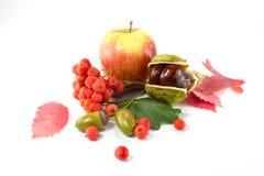 Eberesche, eine Eichel und eine Kastanie, ein Apfel und ein Herbstlaub Stockfoto