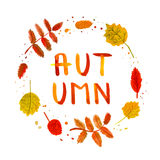 Ebereschen- und Birkenblattweinleseaquarell übergeben gezogenen Hintergrund und Karte mit handgeschriebenem Herbsttextvektor Stockfoto