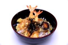 Ebi ścięgno, krewetki Tempura na ryż z pieczarką i gałęzatka, iso Obrazy Royalty Free