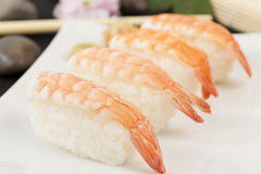 Ebi Nigiri Sushi Stock Photo
