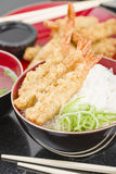Ebi Tendon Stock Photography