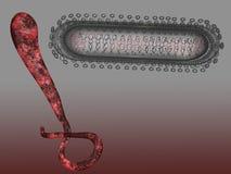 ebola Lizenzfreie Stockbilder