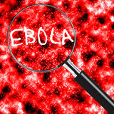 ebola Photographie stock