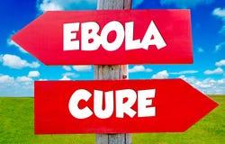 Ebola concept Royalty Free Stock Photo