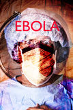 Ebola Crisis Health Worker. A conceptual image of a health worker, world globe and the Ebola crisis Stock Images